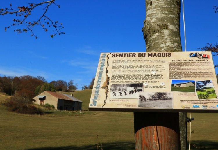HistoireS de RésistanceS : randonnée commentée du sentier du Maquis, sur le Plateau de Retord