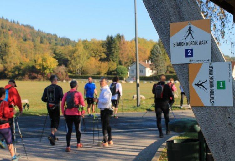 Stage - Marche nordique dans les Montagnes du Jura