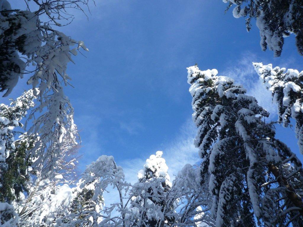 ANNONCE activité Snow tubing sur le site de Cuvéry